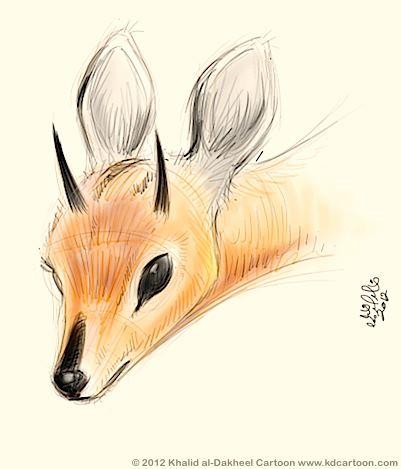 Antelope Face Drawing Antelope