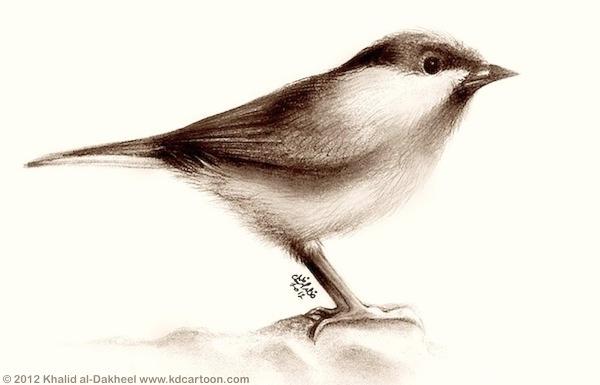 lil-bird