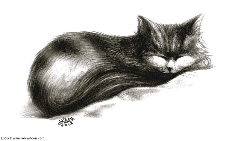 looly-sleeping3