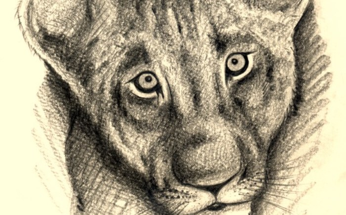 rp_lion_cub.jpg