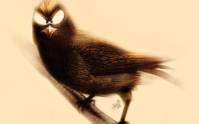 rp_evil_bird.jpg