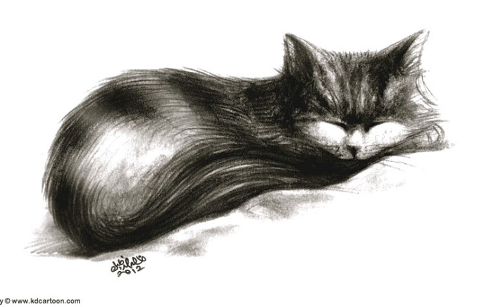 rp_looly-sleeping3.jpg