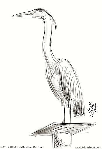 bird-long-neck