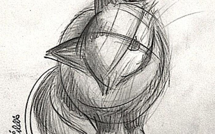 cat-structure1