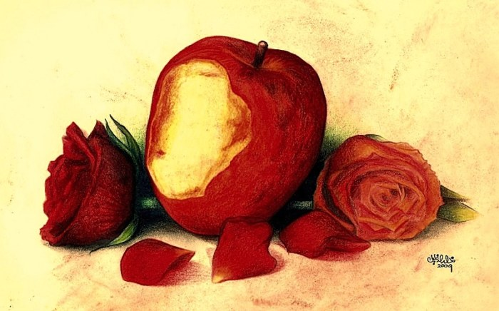 apple_and_rose