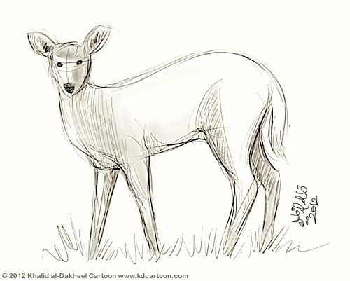 gazelle-sketch