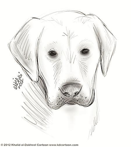 old-dog-face