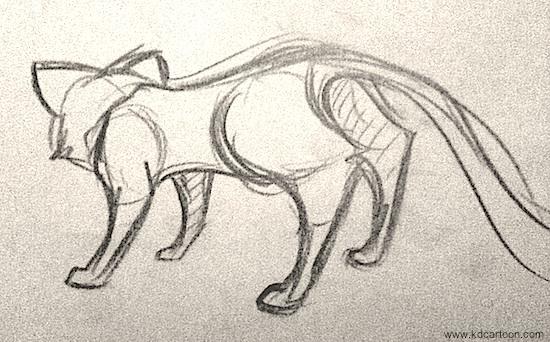 rear_angle_cat