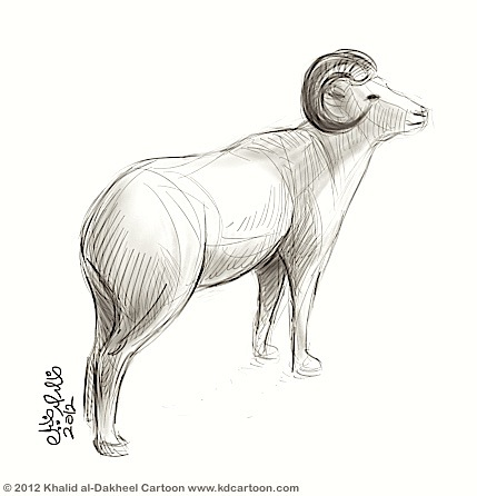 sheep-sketch