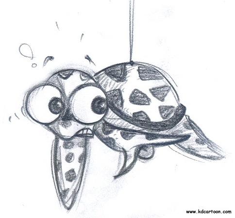 turtle_sketche1
