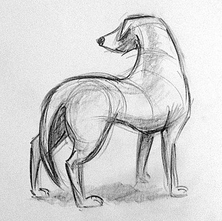 dog-struct1