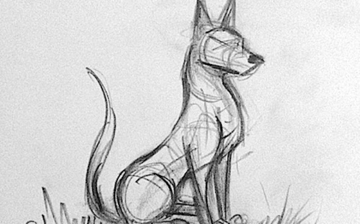 dog-struct2