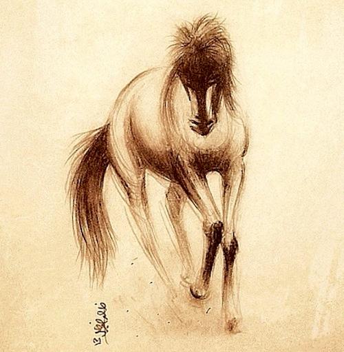 horse-artistic-sketch