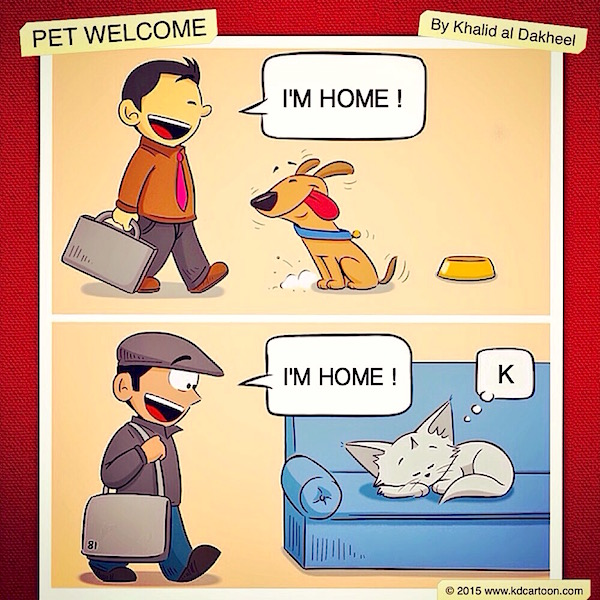 Pet Welcome